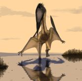 Lacusovagus, which scientists say represents a new genus of pterosaurs