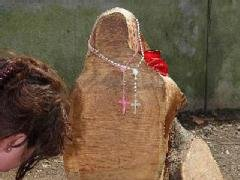 Catholics Say Tree Stump Looks Like Mary