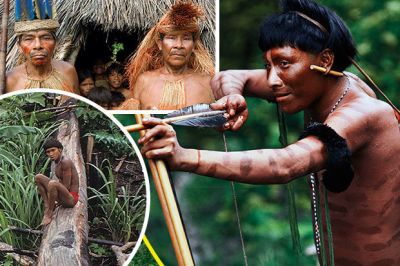 THE incredible lives of uncontested Amazonian tribes that have had little to no communication with the outside world