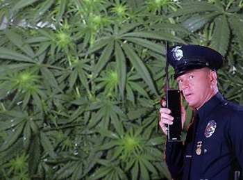 jackbooted government thugs kill marijuana grower