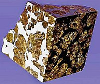 pallasite meteorite gets auctioned