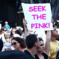 seek the pink - pink protest