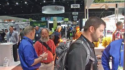Hundreds attend the Cannabis Business Summit in San Jose