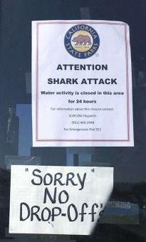 a sign warns beach goers at San Onofre State Beach after a woman was attacked by a shark in the area Saturday, along the Camp Pendleton Marine base in San Diego County